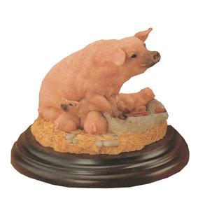 Varken met kalfjes - Pig with piglets