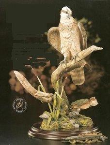 The Return Osprey