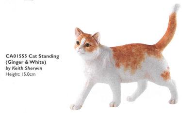 Cat Standing Ginger&White