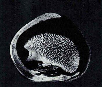 Hedgehog - Mats Jonasson