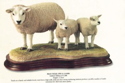 Texel Ewe & Lambs - Limited Edition 660 / 1500