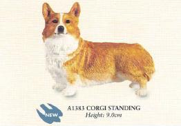 Corgi Standing