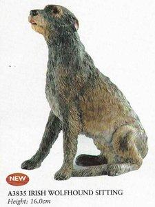 Irish Wolfhound Sitting
