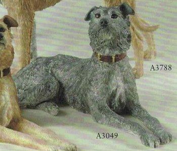 Lurcher lying grey