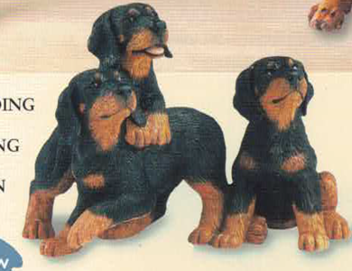Three doberman Pups