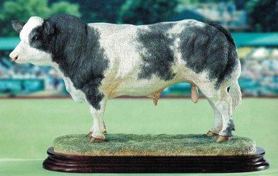 belgian blue bull