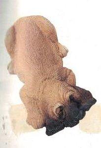 bloodhound drooper