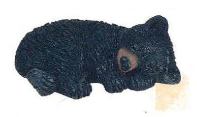 bear black cub