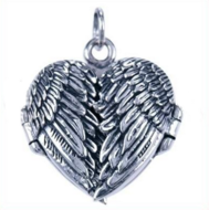 Medaillon Vleugels